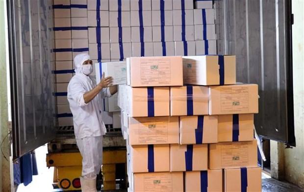 宁顺省首批虾类产品按照EVFTA协定向欧盟出口 hinh anh 1