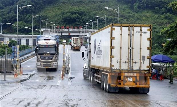 越南--中国在东盟区内的最大贸易伙伴 hinh anh 1
