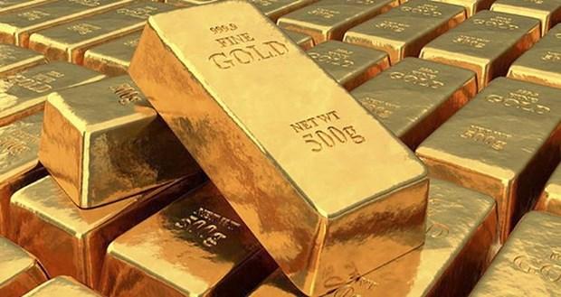 9月14日上午越南国内黄金价格略增 hinh anh 1