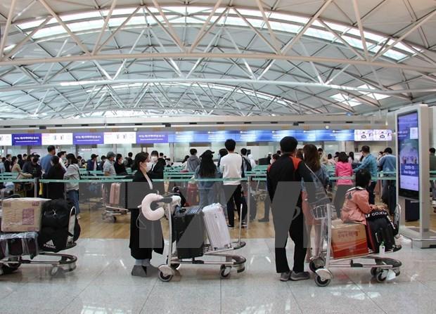 新冠肺炎疫情:在韩国的近380名越南公民安全回国 hinh anh 1