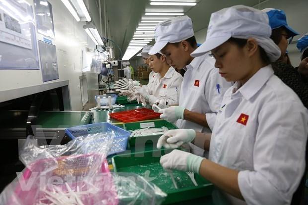 越南经济在新冠肺炎疫情暴发时仍稳定增长 hinh anh 1