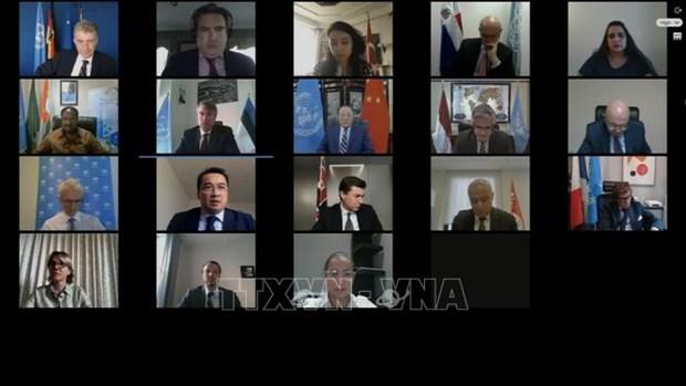 越南呼吁国际社会助力叙利亚应对新冠肺炎疫情 hinh anh 1