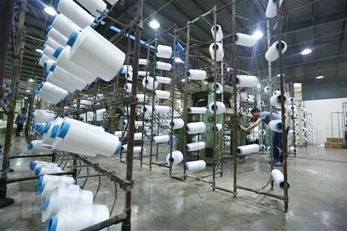 越南企业须密切观察马里市场的情况 hinh anh 1