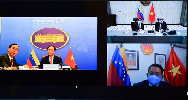 越南与委内瑞拉召开第八次外交部副外长级政治磋商 hinh anh 2