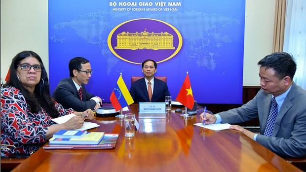 越南与委内瑞拉召开第八次外交部副外长级政治磋商 hinh anh 1