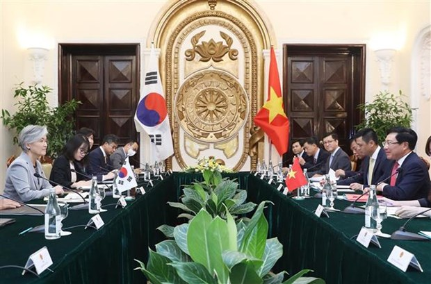 越南政府副总理兼外长范平明同韩国外长举行会谈 hinh anh 1