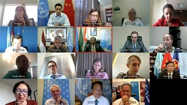 联合国安理会就气候变化和环境退化对国际和平与安全的影响等问题展开讨论 hinh anh 1