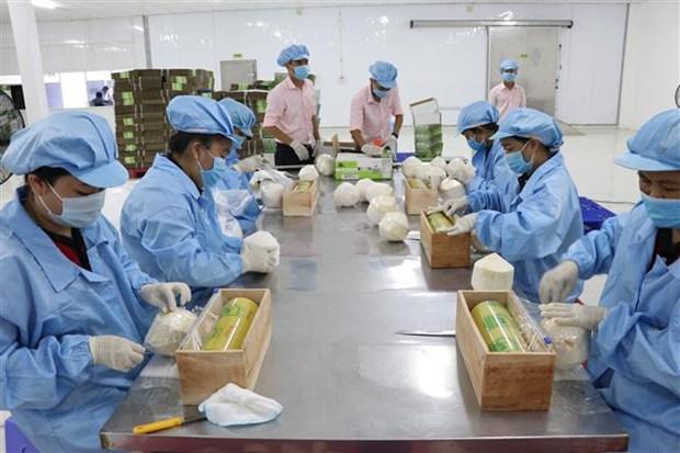 越南农产品价值得到肯定 hinh anh 1
