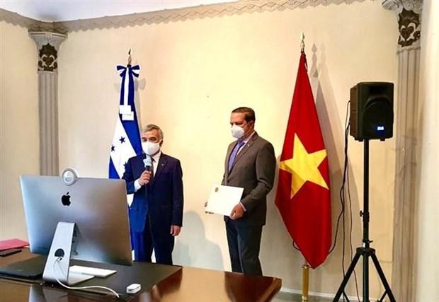 洪都拉斯总统希望与越南促进友好合作关系 hinh anh 1