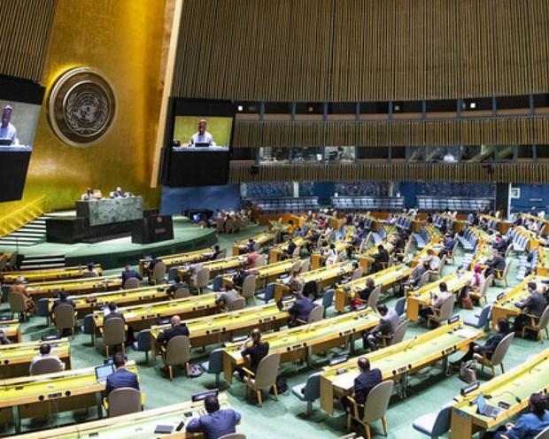 推进多边主义、加强为国际事务做出贡献 hinh anh 1