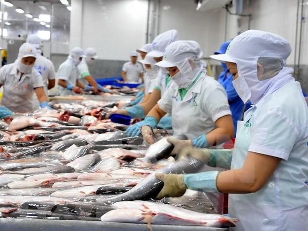 坚江省加强市场对接 助力促进进出口活动 hinh anh 1