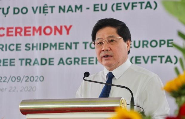越欧自贸协定:越南向欧盟出口126吨香米 hinh anh 1