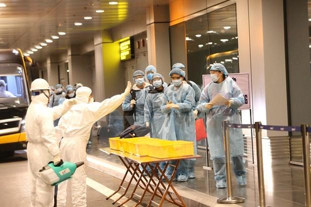 在日本的220余名越南公民安全回国 hinh anh 1