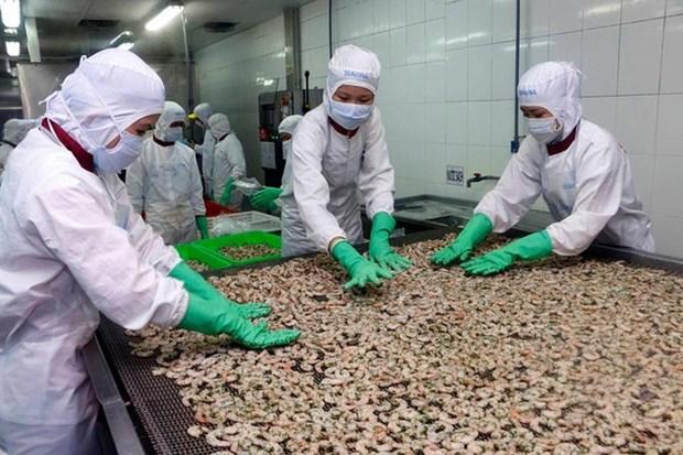 8月份虾类对欧盟出口额创年初以来最高增长率 hinh anh 1