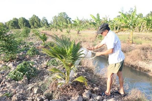 印度向九龙江三角洲7个水资源管理项目提供资金援助 hinh anh 1