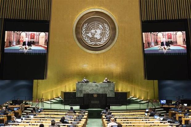 越南与联合国安理会:越南一向重视并希望加强与联合国之间的全面合作关系 hinh anh 1