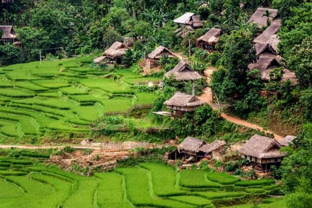 越南清化省梦幻秘境——浦良自然保护区 hinh anh 2