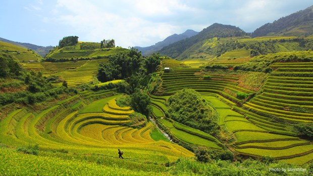 越南清化省梦幻秘境——浦良自然保护区 hinh anh 1