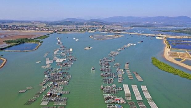对沿海经济区发展规划做出调整和补充 hinh anh 1