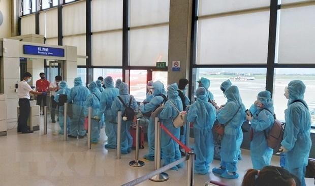 将在美国和日本的逾350名越南公民接回国 hinh anh 1
