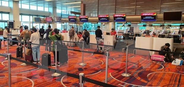 新冠肺炎疫情:将在新加坡的230多名越南公民接回国 hinh anh 1
