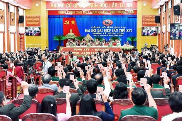 越共中央书记处常务书记陈国旺出席越共嘉莱省第十六次代表大会 hinh anh 2