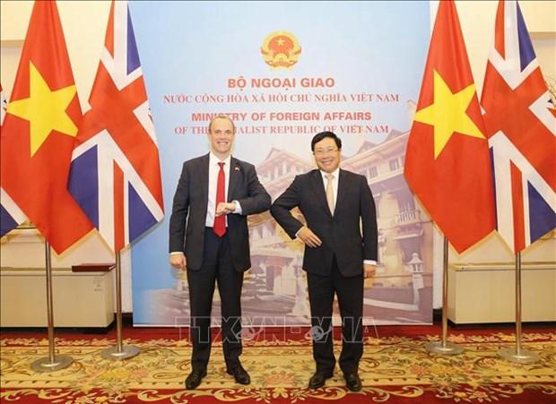 越南政府副总理兼外长范平明同英国外交发展大臣举行会谈 hinh anh 2