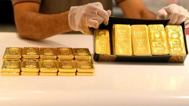 10月1日上午越南国内黄金价在5560万越盾左右 hinh anh 1