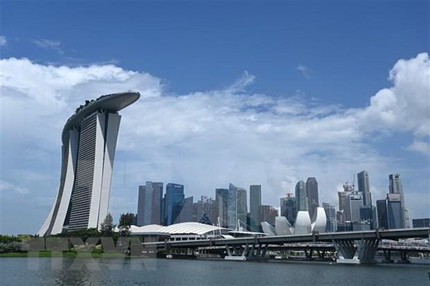 新冠肺炎疫情加快新加坡的数字贸易进程 hinh anh 1