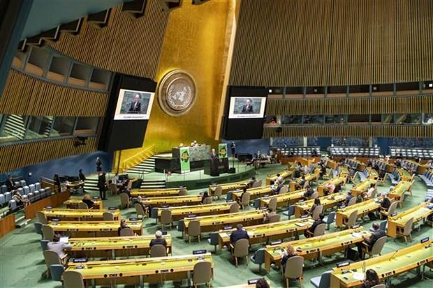 越南自然资源与环境部长在联合国生物多样性峰会上发表讲话 hinh anh 2