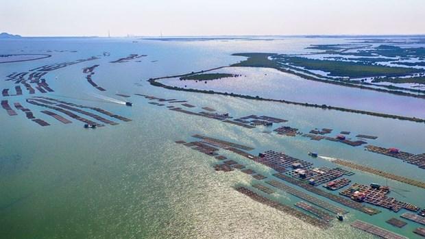 广宁省建立广安沿海经济区 hinh anh 1