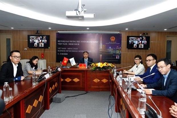 越南与南共市贸易促进会以视频方式召开 hinh anh 2