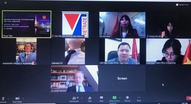 越南与南共市贸易促进会以视频方式召开 hinh anh 1