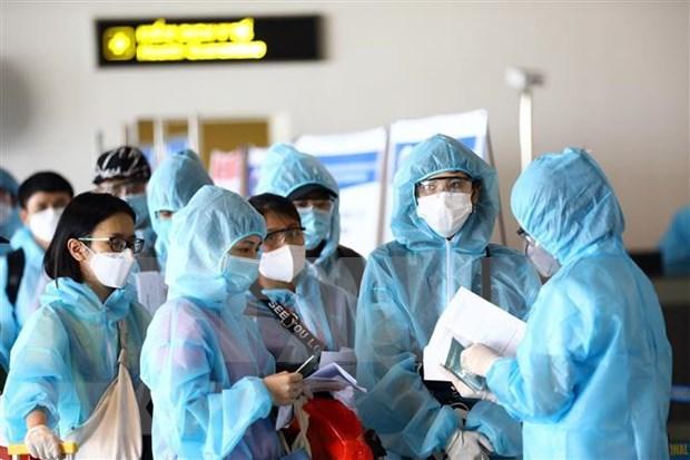 新冠肺炎疫情:在欧洲和非洲的近340名越南公民安全回国 hinh anh 1