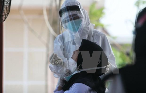新冠肺炎疫情:公共卫生仍是印尼政府的头等优先事项 hinh anh 1