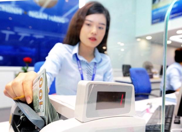 10月5日上午美元和人民币汇率走势保持稳定 hinh anh 1