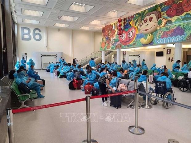 新冠肺炎疫情:将逾350名越南公民从中国台湾接回国 hinh anh 1