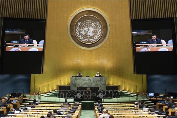 越南呼吁海地各方增进对话 寻求全面解决方案 hinh anh 1