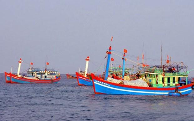 美国战略与国际研究中心:东海捕鱼产量大幅下降 hinh anh 1