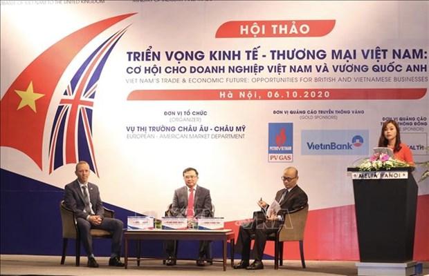 英国对越南的投资项目400个 hinh anh 2