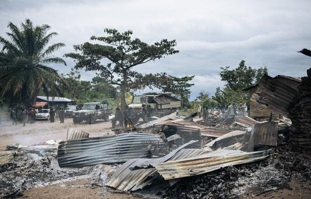 越南强调了解决刚果冲突问题的对话与和解的重要性 hinh anh 1