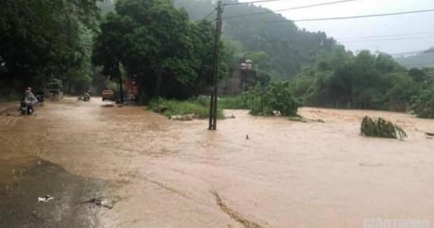 洪涝给越南多地遭造成严重的人员和财产损失 hinh anh 2