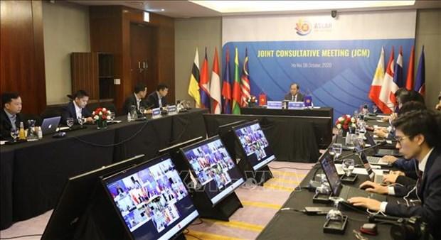 东盟联合磋商会和东盟协调委员会工作组第十次会议以视频方式召开 hinh anh 1