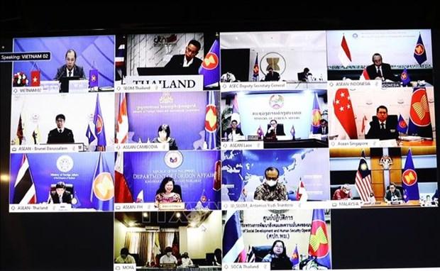 东盟联合磋商会和东盟协调委员会工作组第十次会议以视频方式召开 hinh anh 2