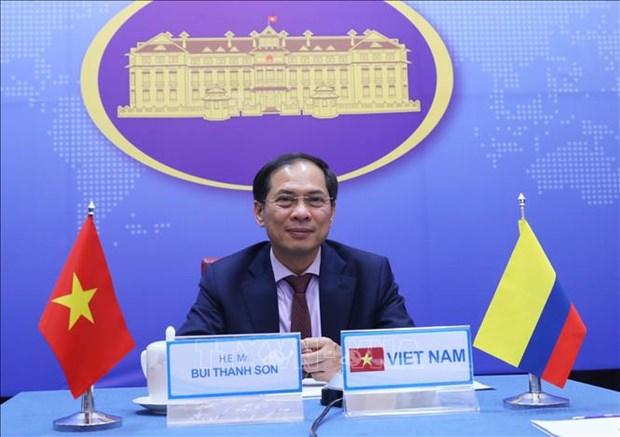 第5次越南与克伦比亚外交部副部长级政治磋商以视频形式进行 hinh anh 1