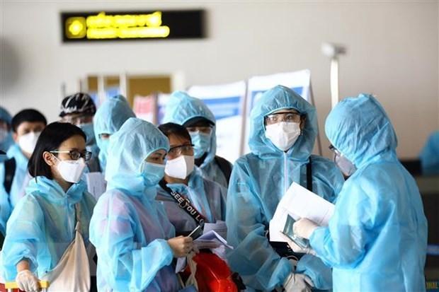 新冠肺炎疫情:在新加坡滞留的近360名越南公民安全回国 hinh anh 1
