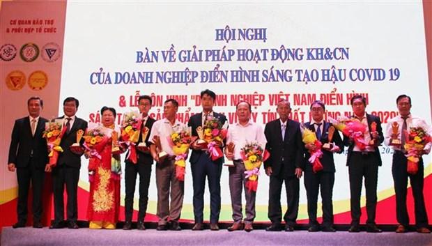 胡志明市举行创新型先进企业和优质产品/服务表彰会 hinh anh 1