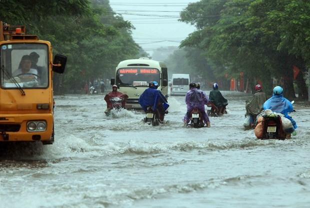 越南多地密切关注暴雨洪水情况 全力开展灾后重建工作 hinh anh 1