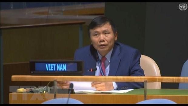 越南承诺为联合国特别政治和非殖民化委员会维和行动做出积极主动且负责任的贡献 hinh anh 1