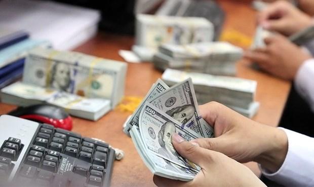 10月19日越盾对美元汇率中间价上调5越盾 hinh anh 1